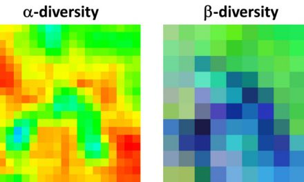 new publication: Measuring β‐diversity by remote sensing: A challenge for biodiversity monitoring