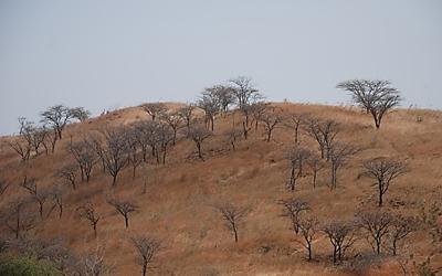 Stellenausschreibung – Wissenschaftliche/r Mitarbeiter/in: Landnutzung im Kontext des Klimawandels in Westafrika
