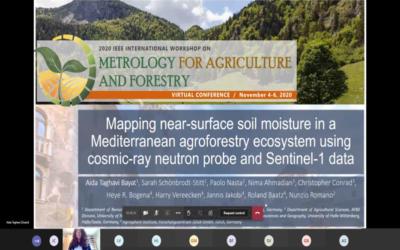 Presentation at the IEEE workshop MetroAgriFor 2020