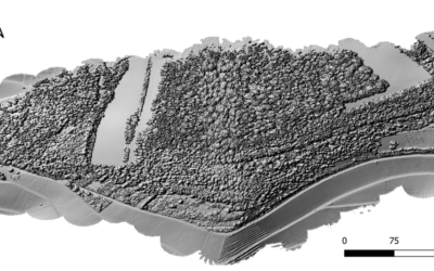 UAV Lidar mapping for rockfall Risk Estimation