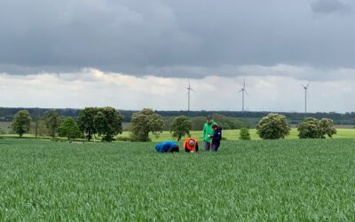 Field Work at Demmin, May 24-28 2021