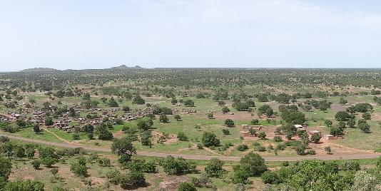 full position within WASCAL project, West African vegetation and phenology