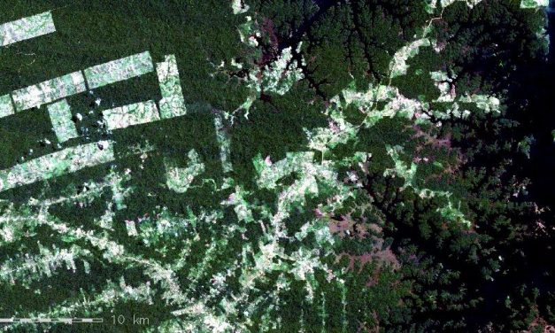 Postdoc or PhD position in remote sensing for global change