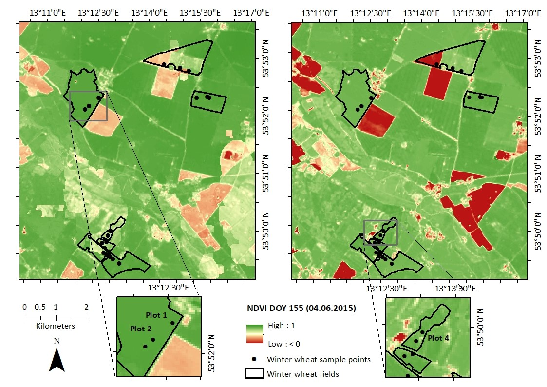 Article published: Modelling Crop Biomass from Synthetic Remote Sensing Time Series: Example for the DEMMIN Test Site, Germany