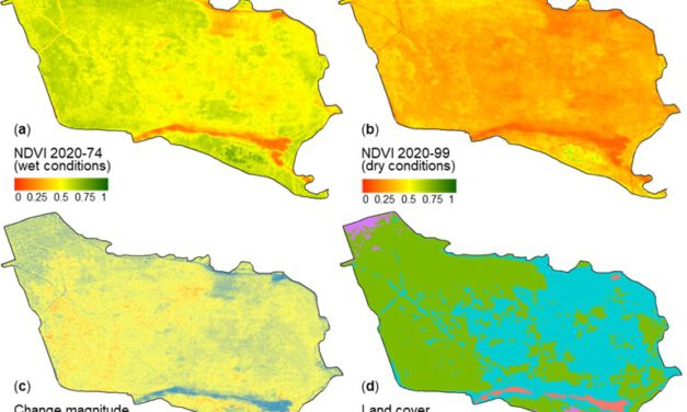 New publication: Coverage and Rainfall Response of Biological Soil Crusts Using Multi-Temporal Sentinel-2 Data in a Central European Temperate Dry Acid Grassland